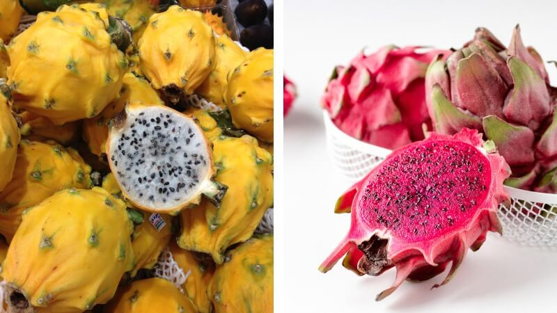 yellow and red dragon fruit