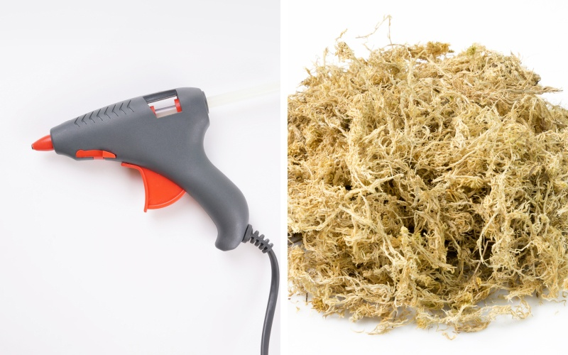 Hot glue and moss for succulent arrangements